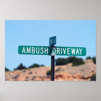 Ambush Driveway in New Mexico Poster