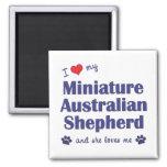 Ame a mi pastor australiano miniatura (el perro fe iman