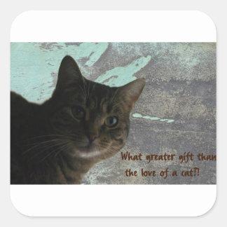 Ame a su pegatina del gato