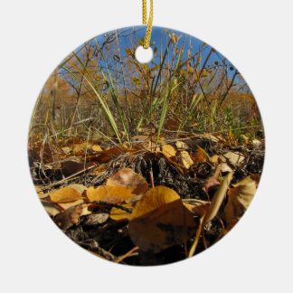 AMe Autumn Mess Ceramic Ornament
