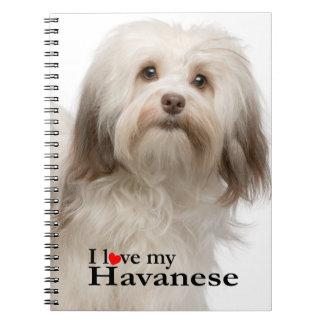 Ame mi cuaderno de Havanese