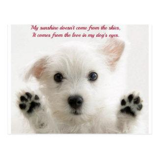 Ame mi perro postales