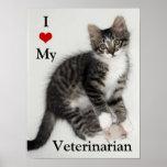 Ame mi poster del gatito de Veterarian Zorro Póster