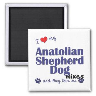 Ame mis mezclas de Anatolia del perro de pastor (l Imán Cuadrado