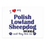 Ame mis mezclas polacas del perro pastor de la tie postales