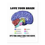 Ame su cerebro que es el único usted tiene (el cer tarjetas postales
