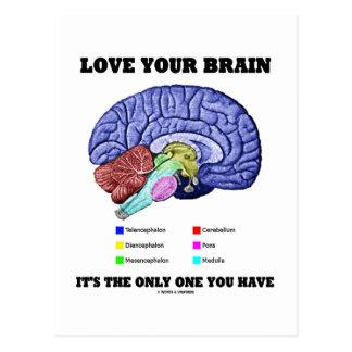 Ame su cerebro que es el único usted tiene el cer tarjetas postales
