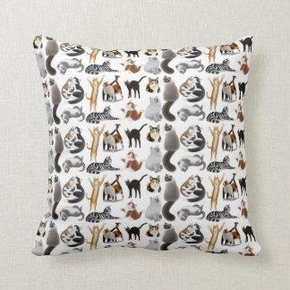 Ame toda la almohada de los gatos del gatito