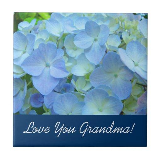 ¡Ámele abuela! Los regalos del navidad tejan el ar Azulejos Cerámicos