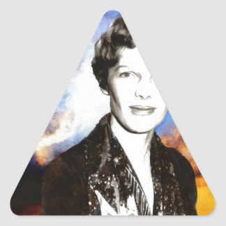 Amelia Earhart Artwork Triangle Sticker