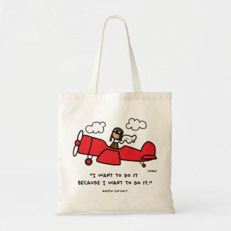 Amelia Earhart bag