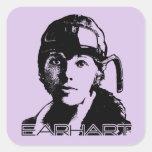 Amelia Earhart Stickers