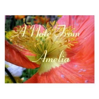 Amelia Postcard