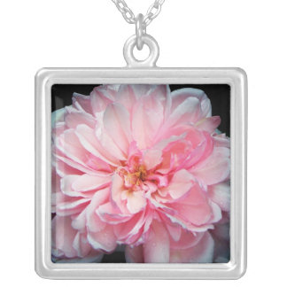 Amelia Rose Silver Plated Necklace