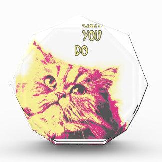 Ámeme como usted hace tema divertido del gato