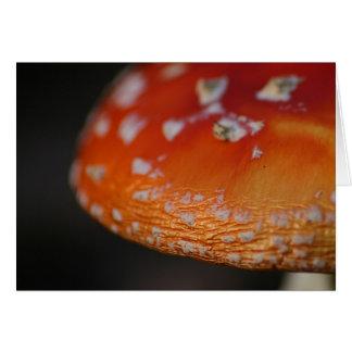 Amenita Mushroom Card