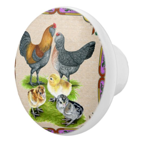 Rooster and Chicken Ceramic Door Knob For Kitchen  Cabinets and Drawers