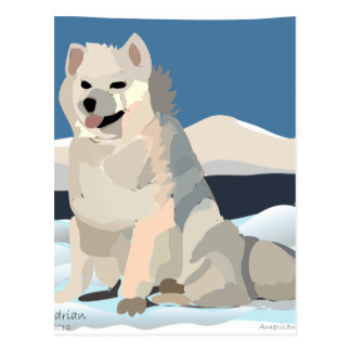 Amercan Eskimo - Just Chillin' Post Cards