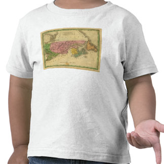 América británica camiseta