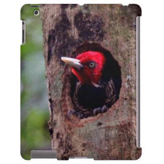 America Central, Costa Rica, Manuel Antonio Funda Para iPad