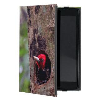 America Central, Costa Rica, Manuel Antonio iPad Mini Cárcasa
