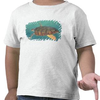 America Central, Panamá, Bocas Del Torro Camisetas