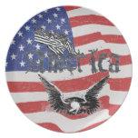 America Eagle Plates