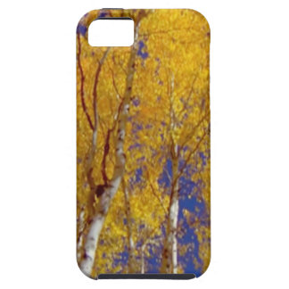 America Fall Season Photography of Trees iPhone 5 Covers