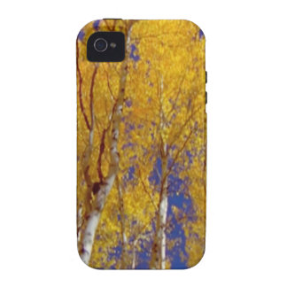 America Fall Season Photography of Trees iPhone 4/4S Cover