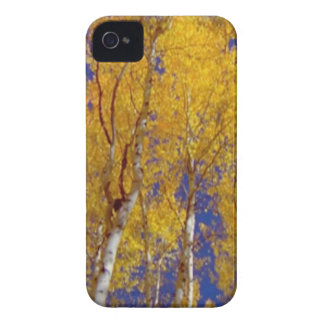 America Fall Season Photography of Trees iPhone 4 Covers