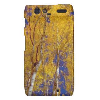 America Fall Season Photography of Trees Droid RAZR Case