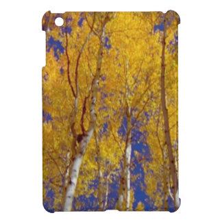 America Fall Season Photography of Trees Cover For The iPad Mini