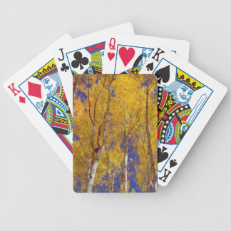 America Fall Season Photography of Trees Bicycle Playing Cards