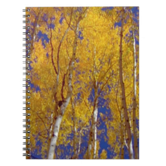 America Fall Season Photography of Trees Spiral Notebook