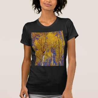 America Fall Season Photography of Trees T-Shirt