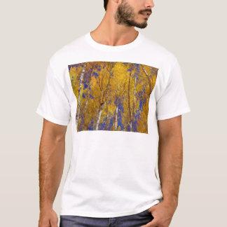 America Fall Season Photography of Trees T-Shirt