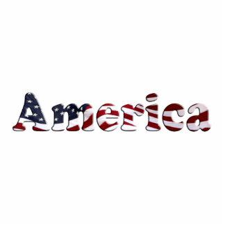 America Flag Text Design Statuette