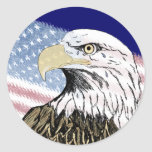 America Forgot 9-11 Classic Round Sticker