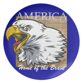 AMERICA - Home of the Brave Melamine Plate