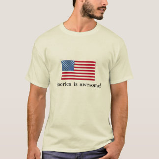 America is awesome! T-Shirt
