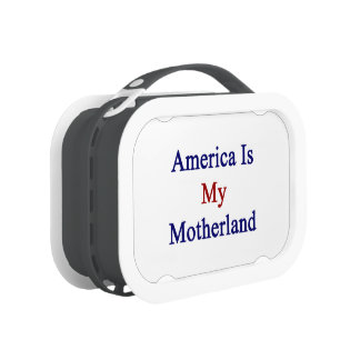America Is My Motherland Replacement Plate