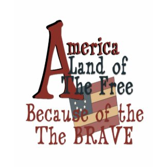 America - Land of the Free Because of the Brave shirt
