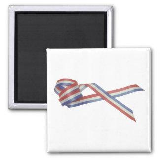 America Patriotic 400 Magnet