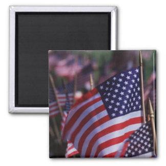 America Patriotic 756 Magnets