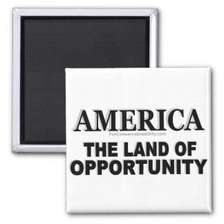 essay america the land of opportunity Critical essays franklin and the american dream bookmark this page  america  was the land of endless opportunity for everyone franklin, of course, only.