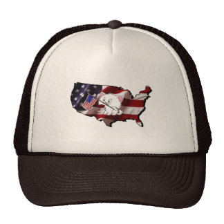 America: USA Silhouette and Kitty Mesh Hat