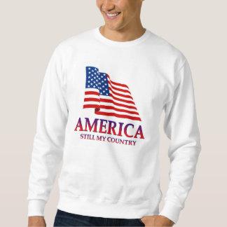 America USA Sweatshirt