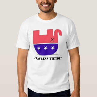 America wins, FLAWLESS VICTORY T-shirt