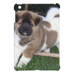 Case Savvy iPad Mini Glossy Finish Case with Akita Phone Cases design