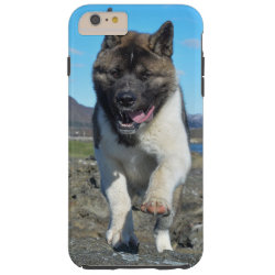 American Akita Tough iPhone 6 Plus Case